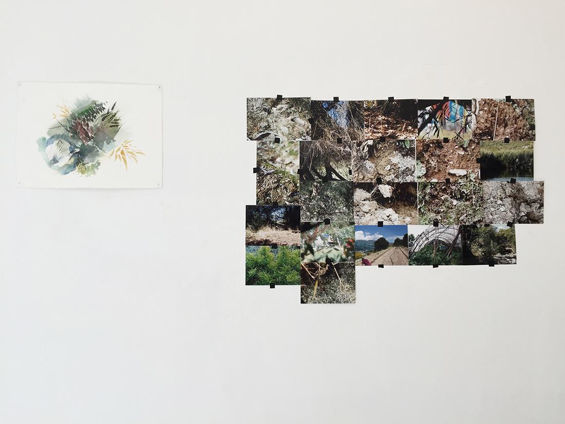 Belvedere, Giulia Gallo - Enrico Partengo